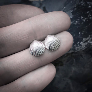 Gold Cockle Shell Stud Earrings