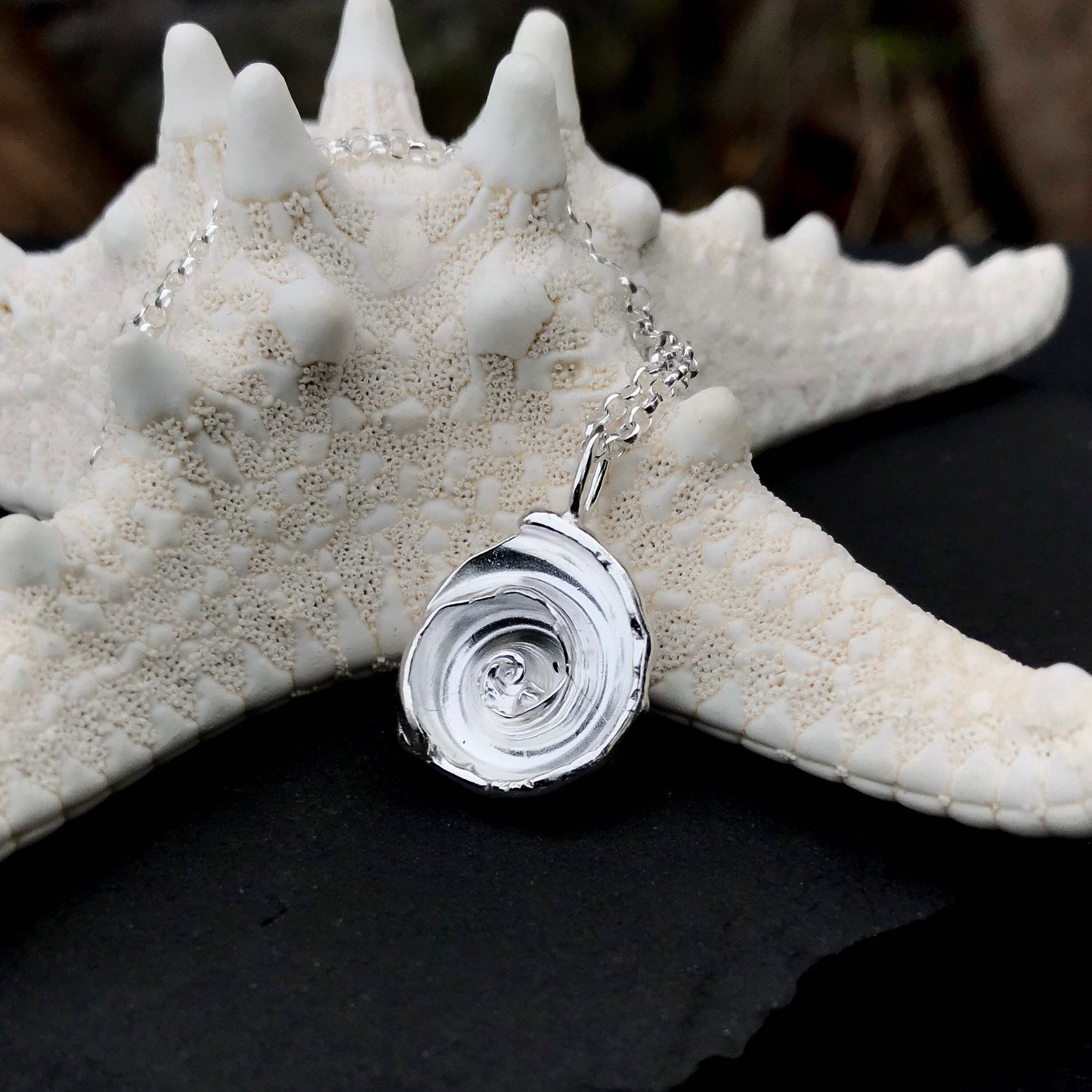 Sterling Silver Spiral Shell Necklace