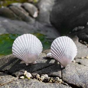 Sterling Silver Scallop Shell Cufflinks - Queenie Shells
