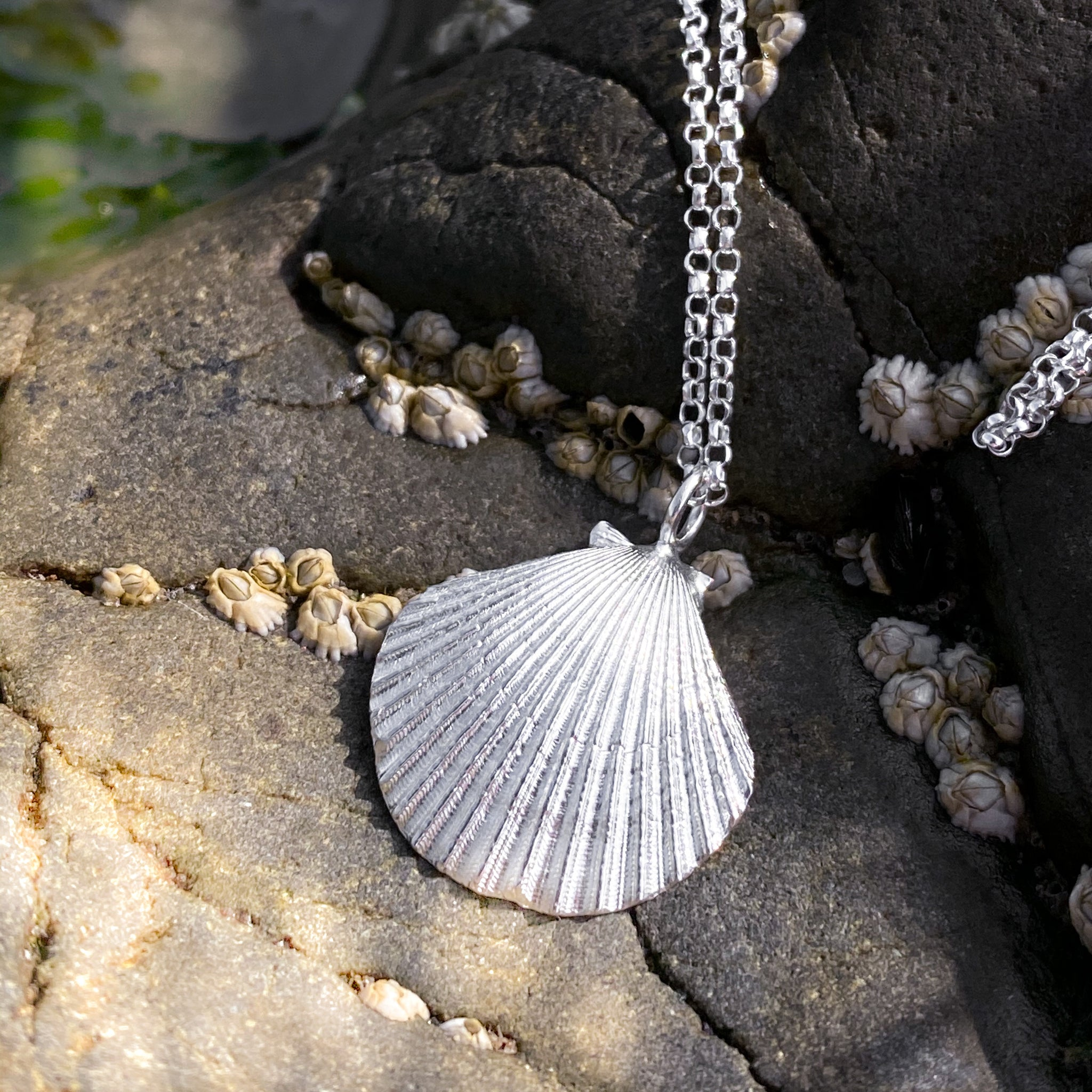 Sterling Silver Scallop Shell Necklace - Queenie Shell