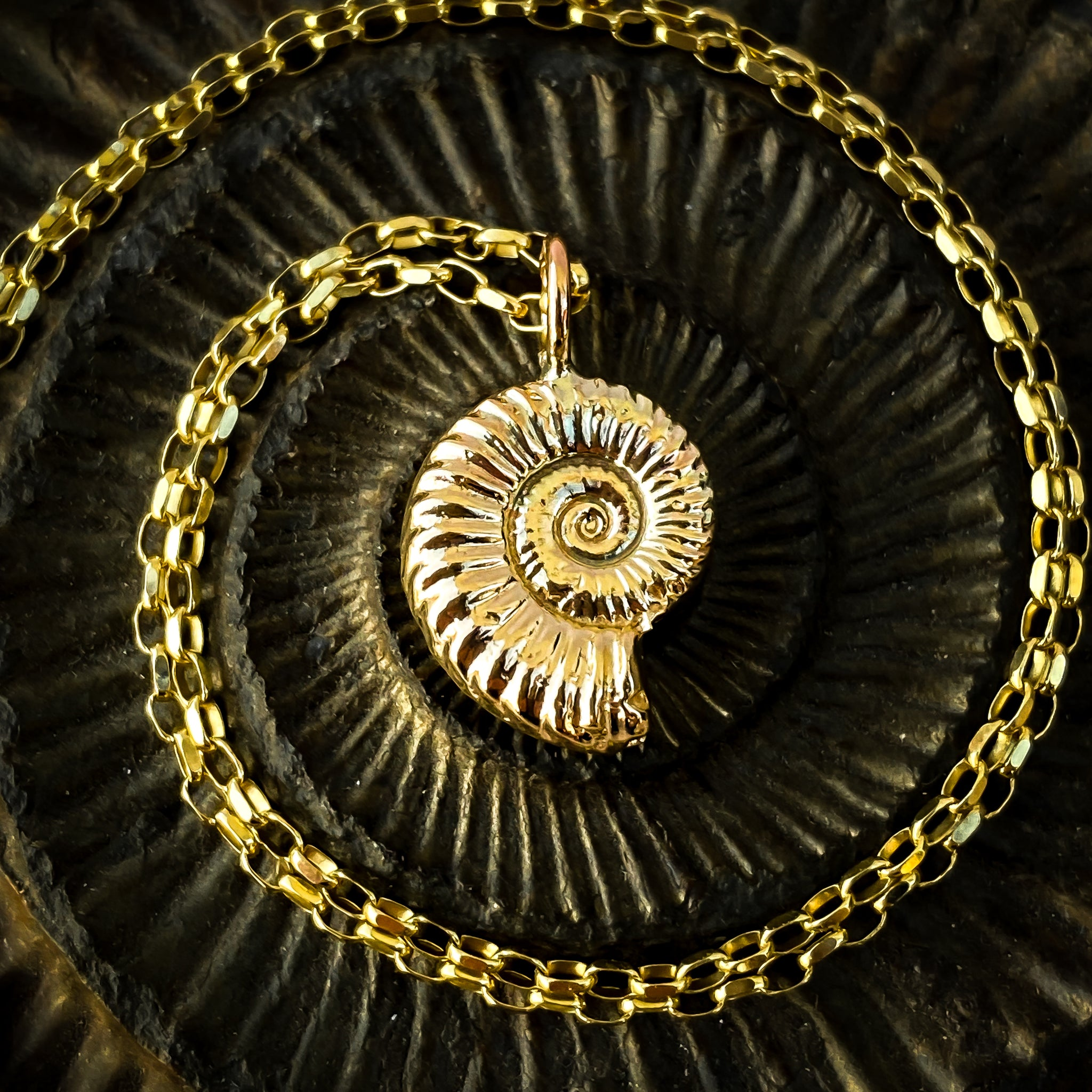 Gold Ammonite Necklace