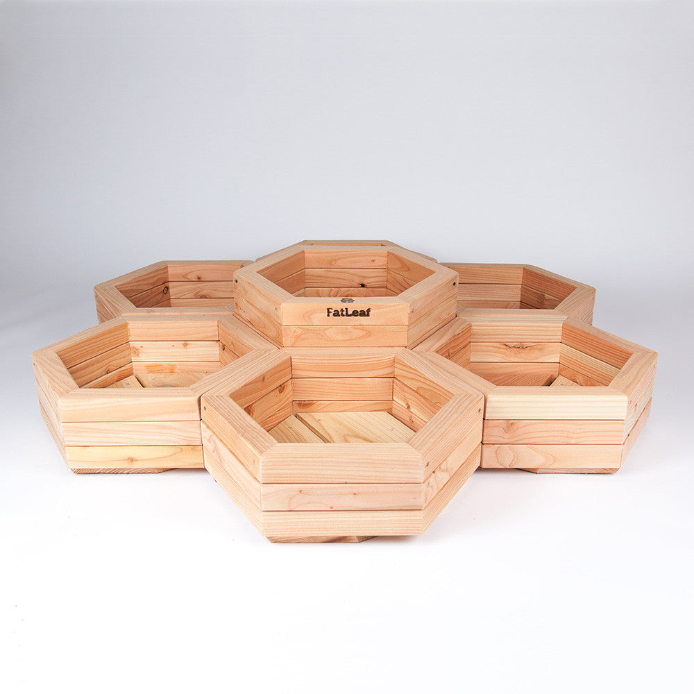 Hexagonal Planter (Herb Wheel)