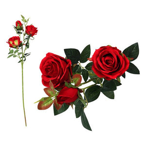 Stem of 5 Roses 113199 Red (60 Cm)