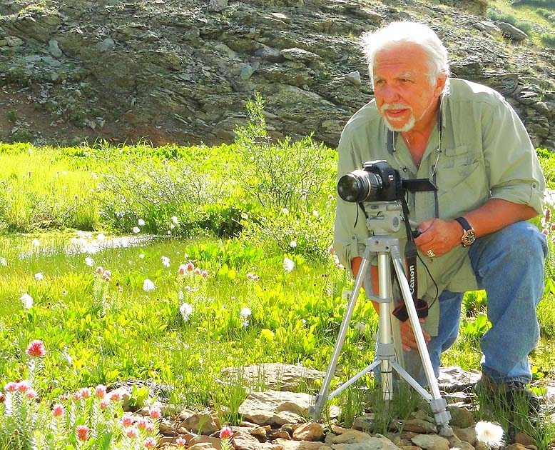 Bernie Nagy photographing Queen's Crown wildflowers