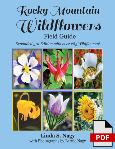 Rocky Mountain Wildflowers Field Guide 2019 (PDF Edition)
