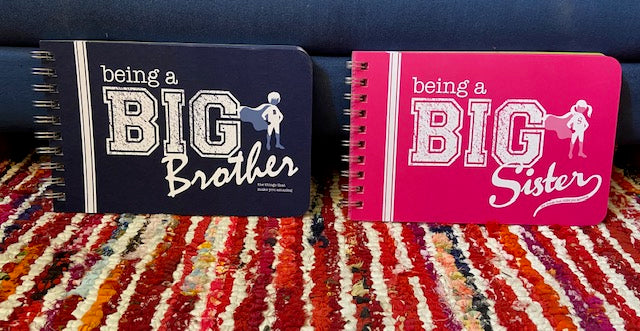 How to Be a Big Brother or Big Sister Advice Book