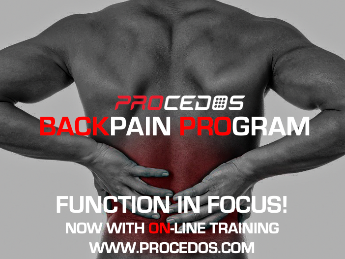BACK PAIN TRAINING PROGRAM