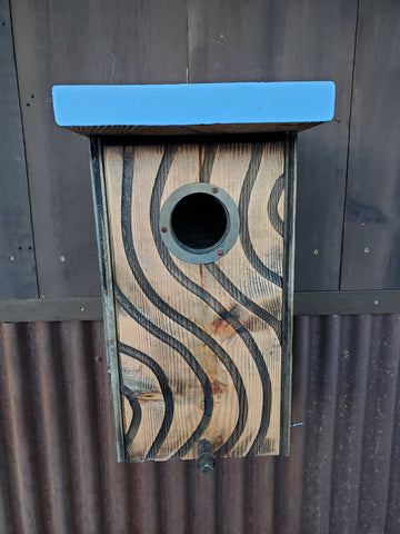 Screech owl, saw-whet owl, kestrel box.
