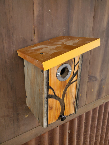 Chickadee/Wren/Nuthatch box