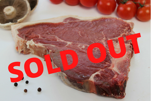 SOLD OUT Galloway Beef - T-Bone Steak 16oz