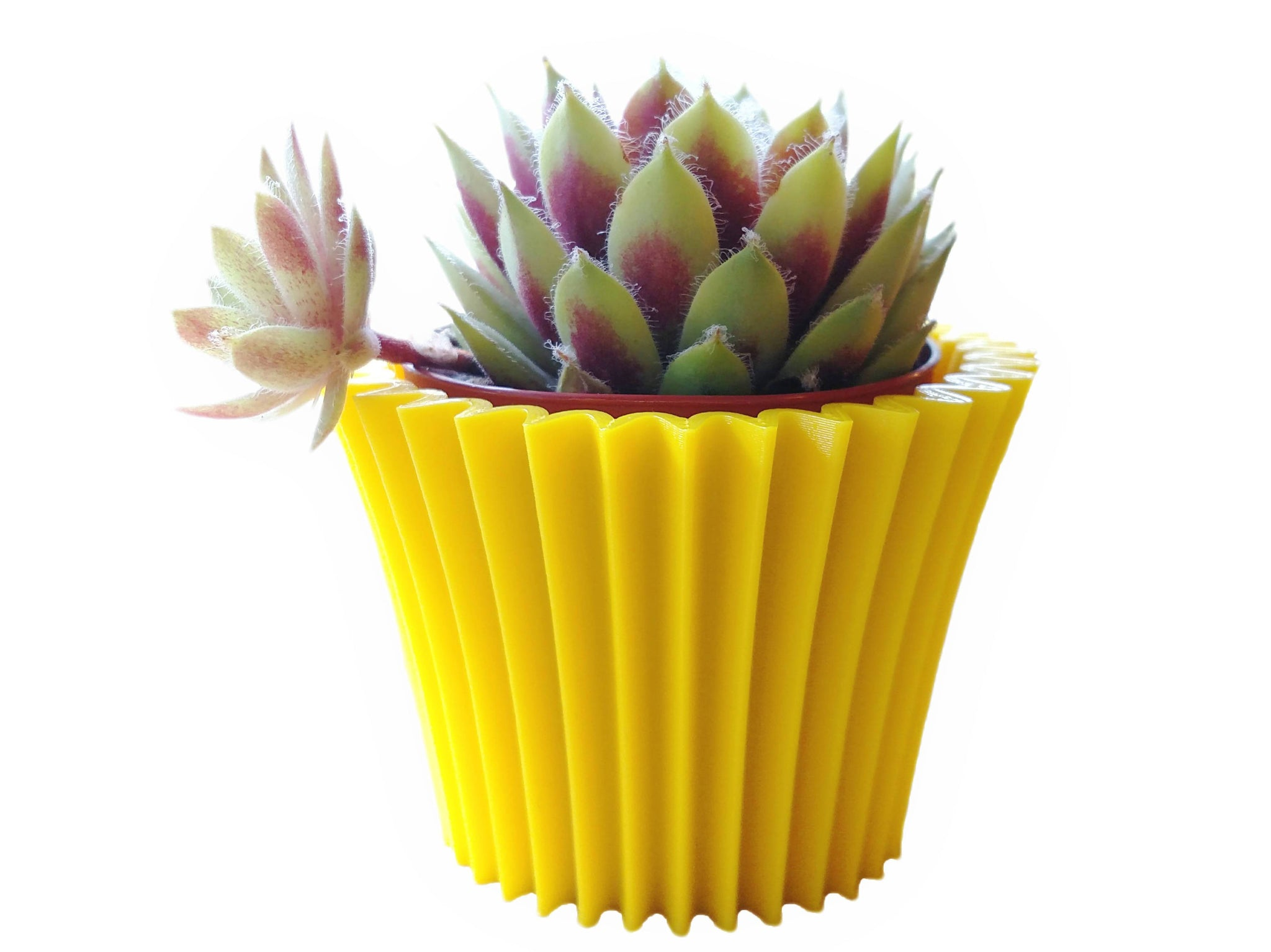 Cupcake 3d Printed Planter - Succulent Mini Planter - Modern Home Decor - Multiple Sizes & Colors Available - Geometric Design