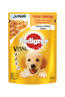 Ushqim Qeni Pedigree Pouch Junior Chicken 100g