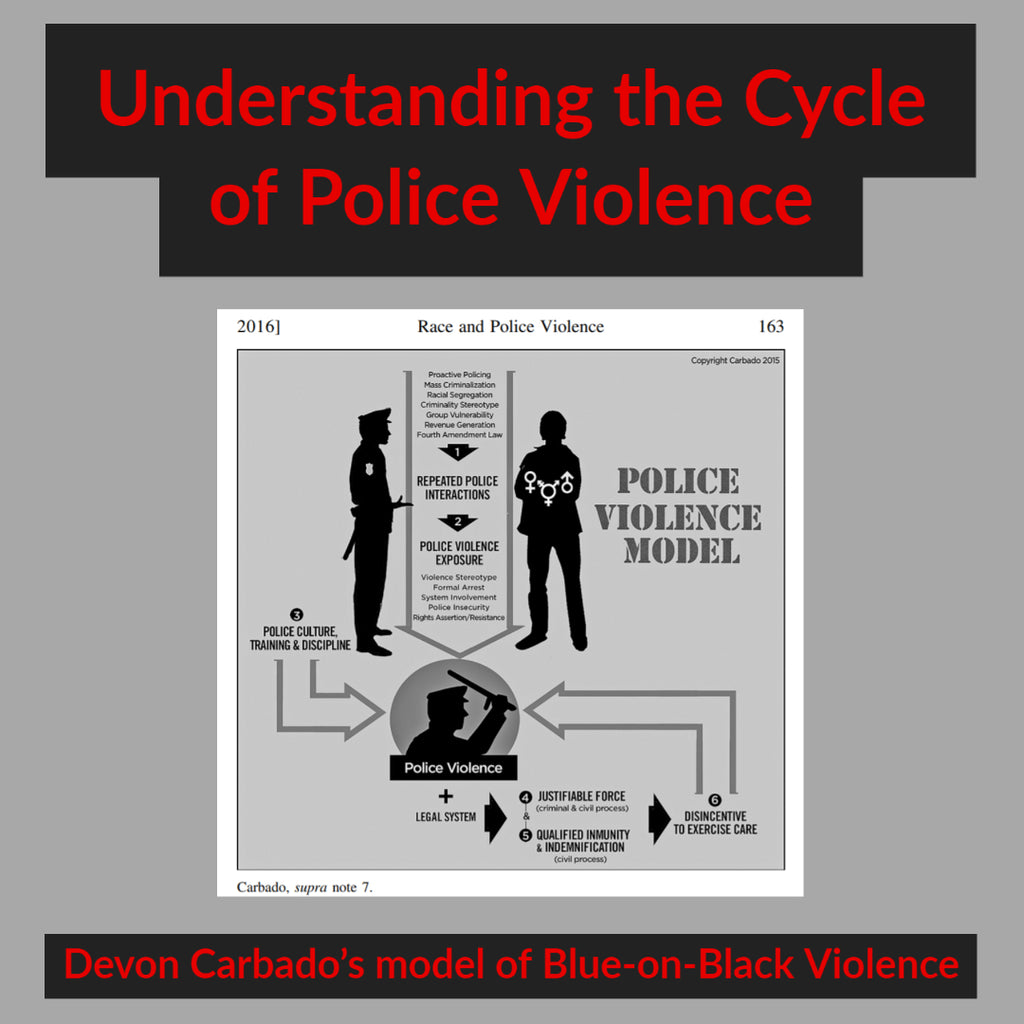 Understanding Carbado's Model of Police Violence