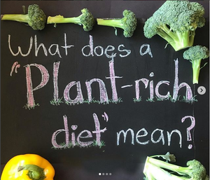 What does a 'plant-rich diet' mean?