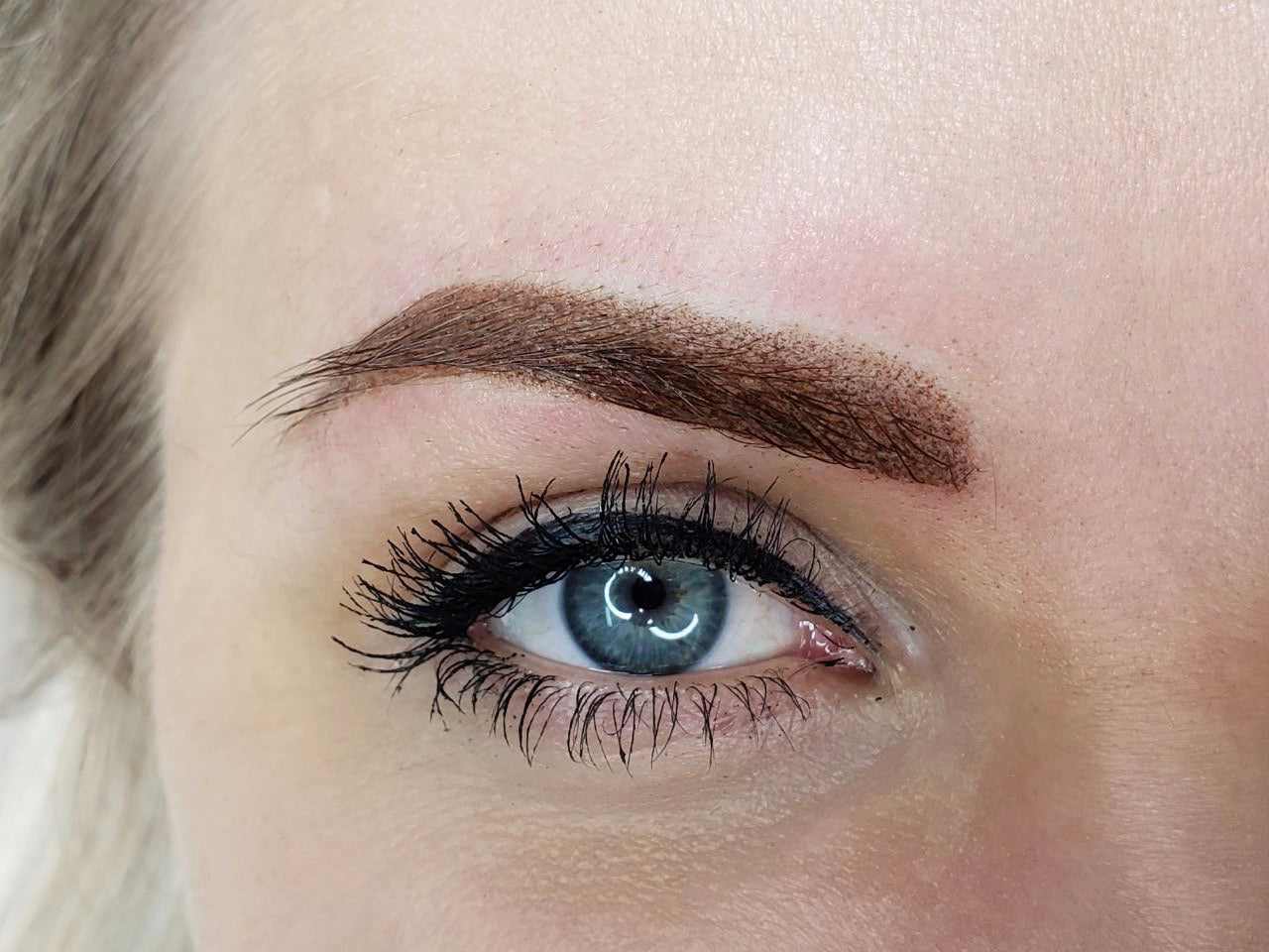 Powder Brows & Hair Strokes Training (HYBRID)