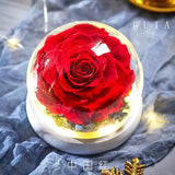 Eternal Exclusive Valentine' s Day Roses