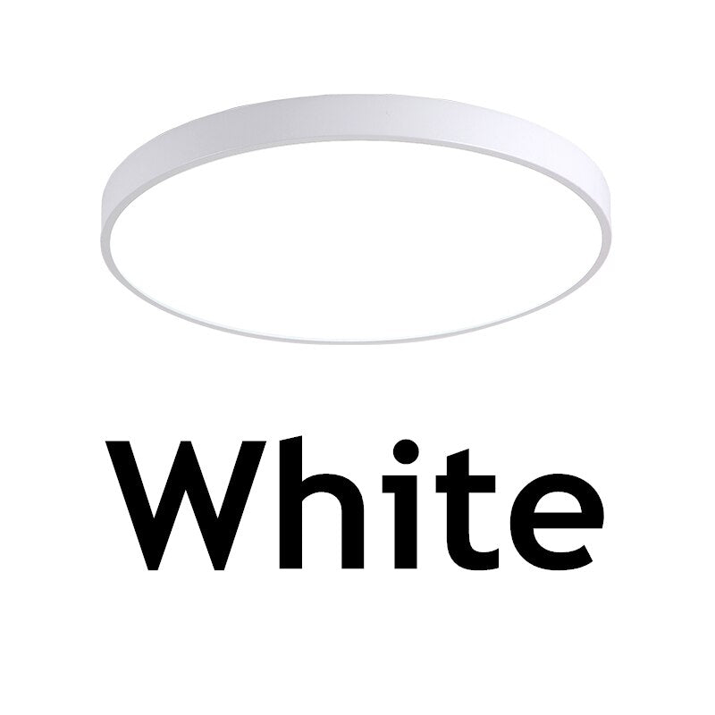 Modern Nordic Simple LED Surface Mount Remote Control dimmable ceiling lamp