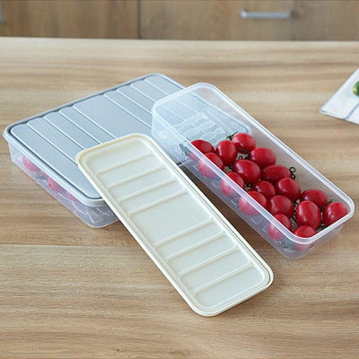 Quality PP Transparent Food Storage Box