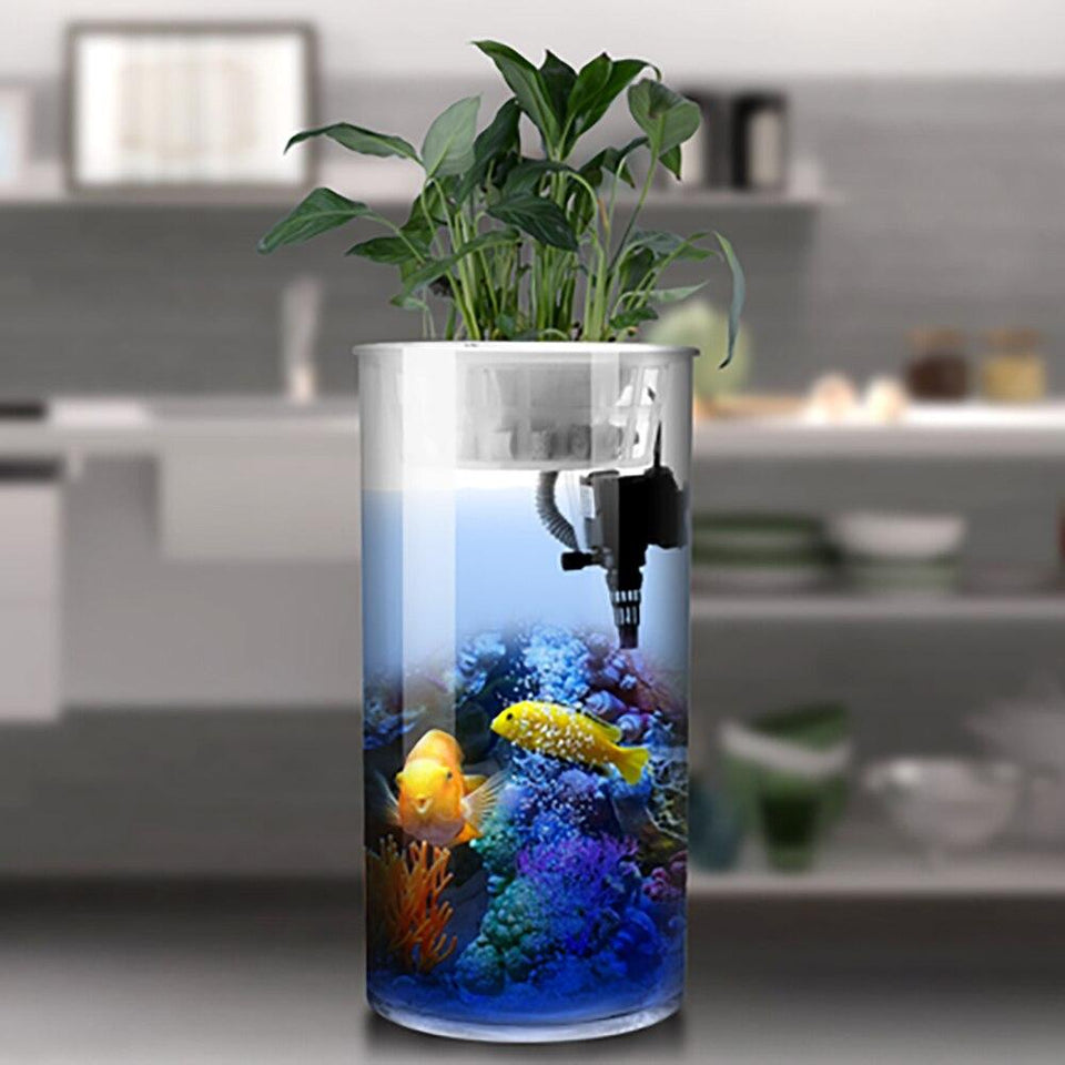 Cylindrical Ecological Fish Tank
