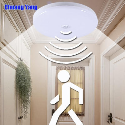 Surface Mounted Modern Ceiling Lights For Entrance Balcony Corridor