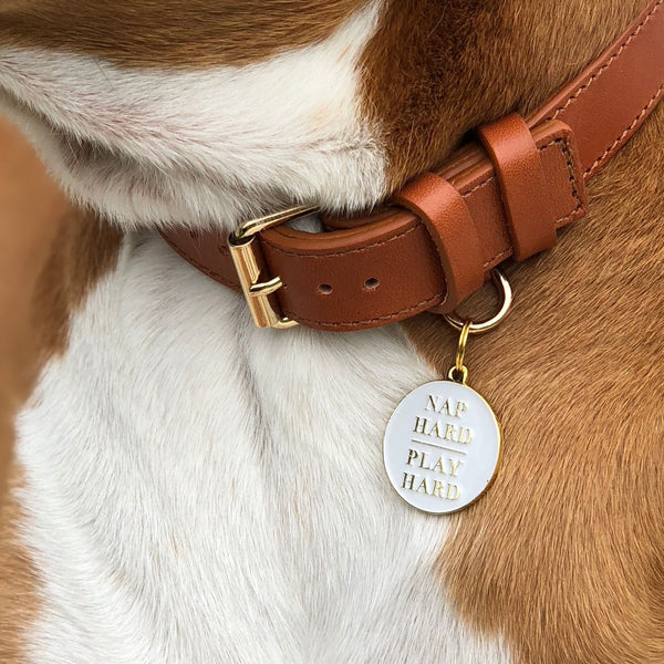 Nap Hard Play Hard - Dog Tag