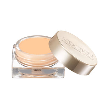 Addiction Perfect Covering Concealer