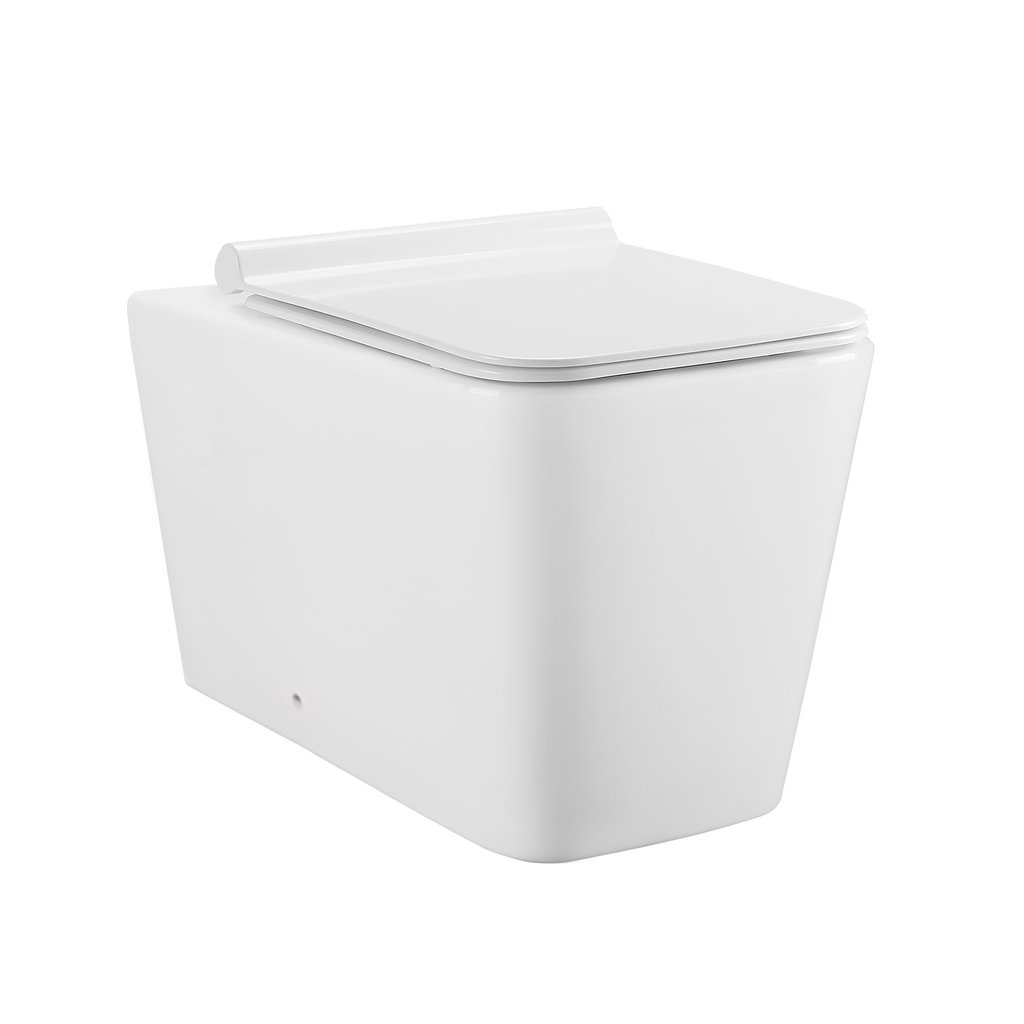 Wall Hung Toilet - SM-WT555 Concorde Back To Wall Concealed Tank Toilet Bowl