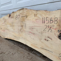 Live Edge Box Elder Wood Slab #1156