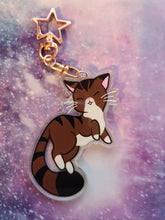 "Load image into Gallery viewer, Brown Tabby Cat Holo Star 3"" Charm - Rose Gold Keychain"