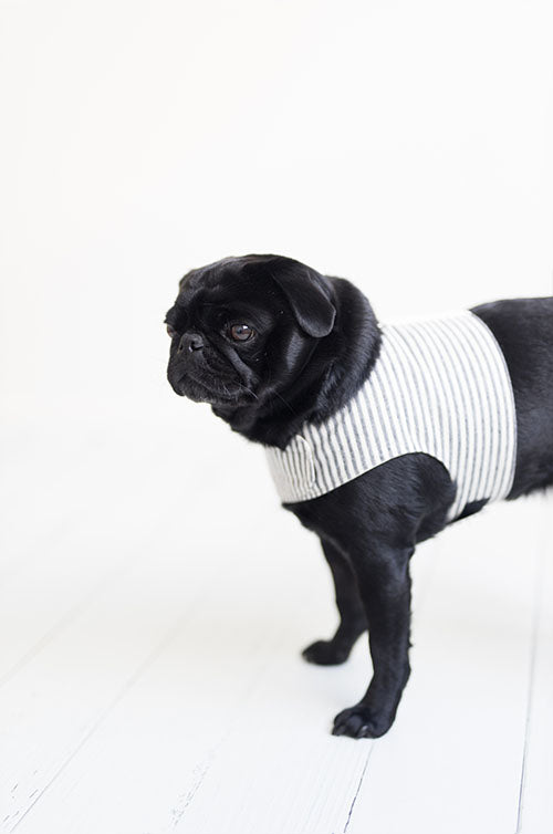Pug hemp wrap harness