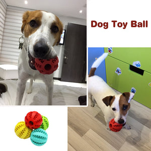 Dog Toy Ball Food Funny Toothbrush
