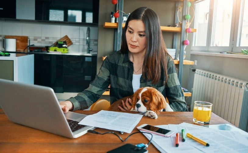 how-to-manage-remote-workers-with-dog