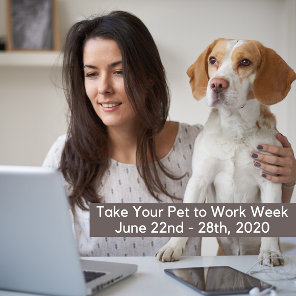 Take Your Pet to Work Week - June 22nd to 28th of 2020