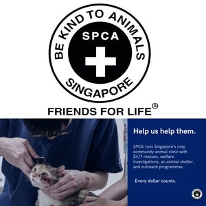 AdoptAgust Collaboration With SPCA - The Pet Supplies Collection