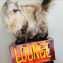 Load image into Gallery viewer, Vintage Metal Neon Box Lamp LOUNGE Neon Sign