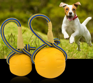 Waterproof Outdoor Fetch Toy