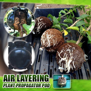 Plant Root Growing Pod