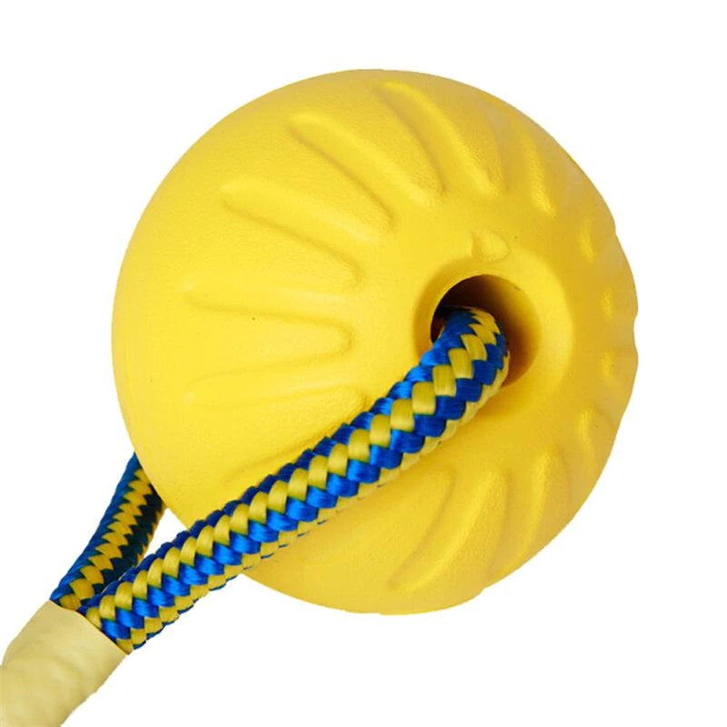 Indestructible Water Fetch Toy