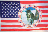 USA SINGLE WOLF CIRCLE 3' X 5' FLAG (Sold by the piece)