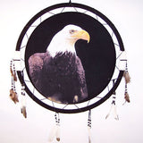 LARGE EAGLE HEAD JUMBO WAR SHIELD (Sold by the piece) -* CLOSEOUT ONLY 7.50 EA