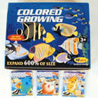ASSORTED MAGIC GROWING FISH (Sold by the dozen) -* CLOSEOUT NOW 25 CENTS EA