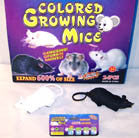 MAGIC JUMBO 4 FOOT GROWING TOY RAT / MICE (Sold by the dozen) -* CLOSEOUT NOW ONLY 50 cents  EA