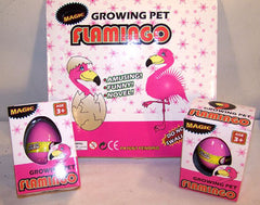 HATCHING & GROWING FLAMINGO EGGS (Sold by the piece or dozen) *- CLOSEOUT 75 CENTS EA