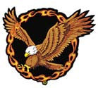 EAGLE RING OF FIRE PATCH (Sold by the piece)