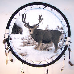 BUCK DEER JUMBO 24 INCH WAR SHIELD DREAM CATCHER (Sold by the piece) -* CLOSEOUT NOW ONLY $4.75  EA