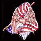 WRAPPED EAGLE AMERICAN FLAG 45 INCH WALL BANNER / FLAG (Sold by the piece) -* CLOSEOUT ONLY $ 2.50 EA
