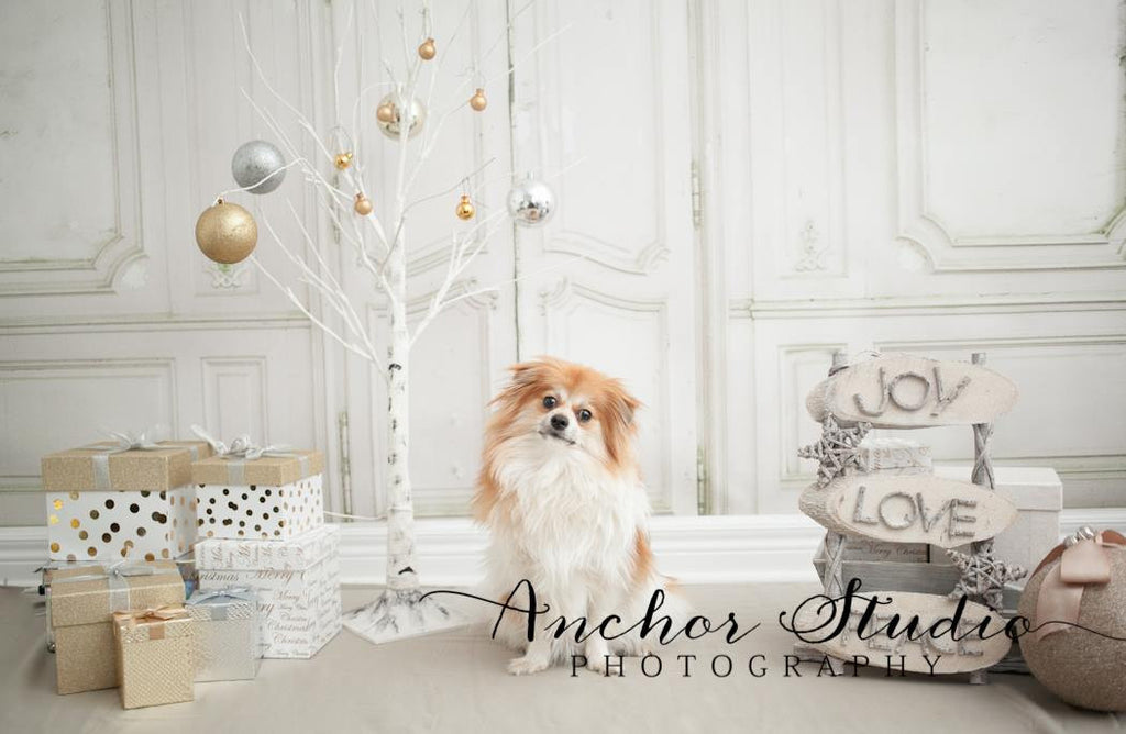 Antique Interior - Backdrop Shop