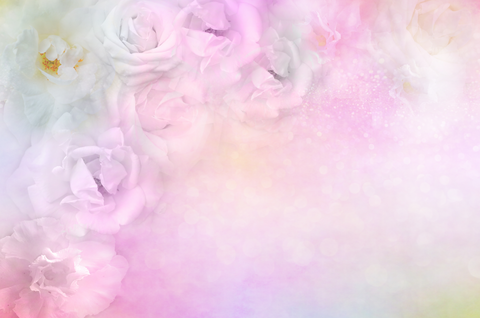 Abstract Roses Background - Backdrop Shop