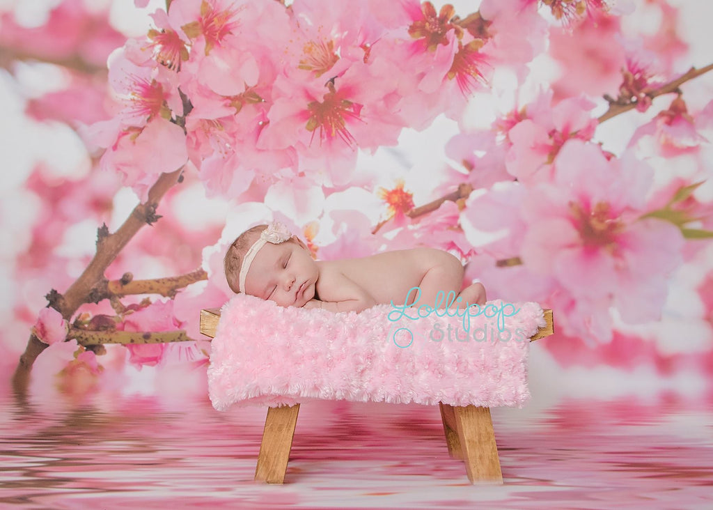 Floating Cherry Blossoms - Backdrop Shop