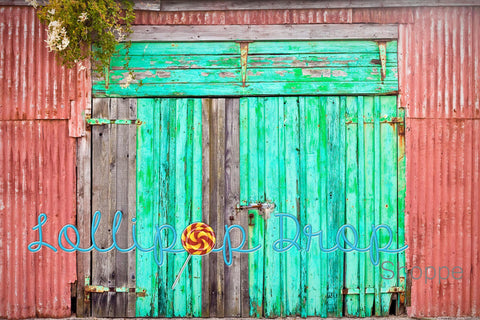 Bright Barn Doors - Backdrop Shop